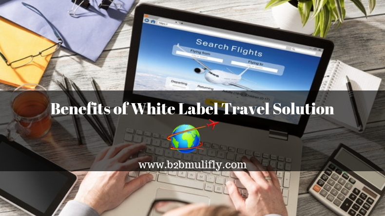 Benefits of White Label Travel Solution
